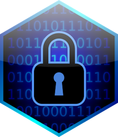 Defensible data privacy